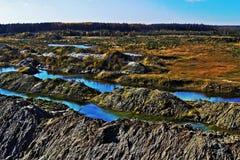 La beauté de la nature Photos libres de droits