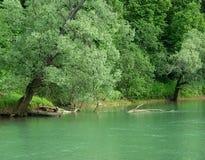 La beauté de la nature image libre de droits
