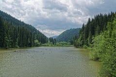 La beauté de la Roumanie image libre de droits