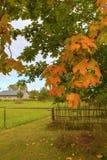 La beauté de la saison d'automne Image stock