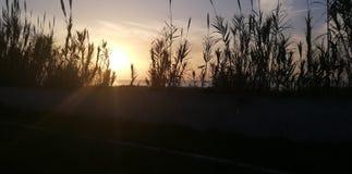 La beauté du coucher du soleil photo stock