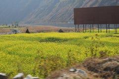 La beauté en dehors de Katmandou Image libre de droits