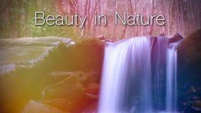 La beauté en nature exprime l'inscription au-dessus d'une cascade dans les bois Photo stock