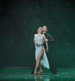 La beauté est dans la danse du monde de l'Autriche de danse-le de poitrine-flamant Photographie stock libre de droits