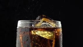 La bebida vierte en un vidrio con descensos del hielo y del goteo del agua Fondo negro Cierre para arriba almacen de metraje de vídeo