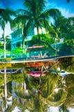 La bella, alta palma davanti alla piscina, Palma è riflessa nel bacino dell'acqua Fotografia Stock Libera da Diritti