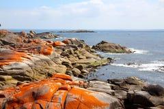 La bella baia dei fuochi sulla costa Est della Tasmania Immagini Stock Libere da Diritti