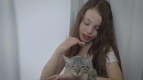 La bella bambina comunica delicatamente con il vostro gatto amato alla finestra video d archivio