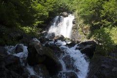 La bella carta da parati della cascata, scorre il flusso veloce del latte Fiume della montagna rocciosa dell'Abkhazia nella latte Fotografia Stock Libera da Diritti