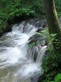 La bella cascata Fotografia Stock