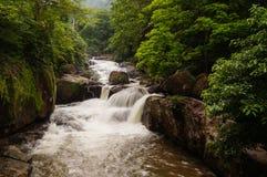 La bella cascata fotografie stock