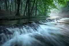 La bella cascata in foresta fotografia stock libera da diritti