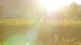 La bella coppia va su un prato archivi video