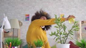 La bella donna afroamericana positiva ballante espressiva con un'acconciatura di afro prende la cura dei fiori e delle piante den video d archivio