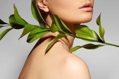 La bella donna applica il cosmetico organico Stazione termale e wellness Modello con pelle pulita Sanità Immagine con la foglia fotografia stock
