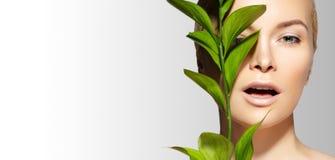 La bella donna applica il cosmetico organico Stazione termale e wellness Modello con pelle pulita Sanità Immagine con la foglia fotografie stock