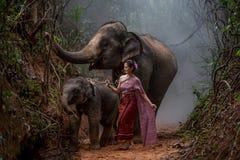 La bella donna asiatica porta il vestito tailandese con il suo elefante, elepha Fotografie Stock