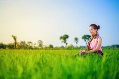 La bella donna dell'agricoltore che si siede in riso ha archivato, la Tailandia Fotografie Stock