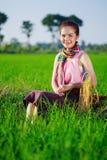 La bella donna dell'agricoltore che si siede in riso ha archivato, la Tailandia Fotografia Stock Libera da Diritti