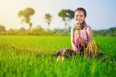 La bella donna dell'agricoltore che si siede in riso ha archivato, la Tailandia Immagini Stock