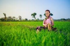 La bella donna dell'agricoltore che si siede in riso ha archivato, la Tailandia Immagini Stock Libere da Diritti