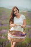 La bella donna della Provenza che si rilassa nel giacimento della lavanda che guarda sul canestro della tenuta del tramonto con i fotografia stock libera da diritti