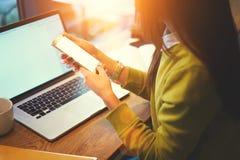 La bella donna di affari con capelli scuri ed il maglione giallo lavora nel coworking Internet senza fili libero nello spazio cow Fotografia Stock