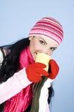 La bella donna di inverno riscalda Immagine Stock