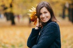 La bella donna europea mora con l'espressione soddisfatta, vestita in cappotto caldo, tiene il fogliame, posa contro giallo vago fotografia stock libera da diritti
