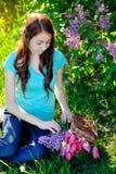 La bella donna mette i fiori nel canestro Immagine Stock