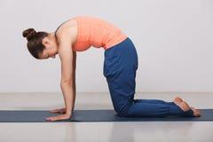 La bella donna sportiva di yogini di misura pratica l'yoga Immagine Stock Libera da Diritti