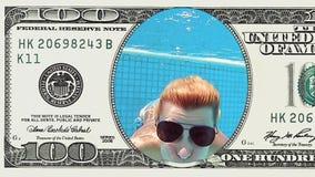La bella donna sta tuffandosi la banconota in dollari di pagina 100 stock footage