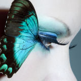La bella fine dell'occhio della donna su con la farfalla traversa Fotografia Stock
