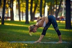 La bella giovane donna pratica il asana Parsvottanasana - posa laterale intensa di yoga di allungamento nel parco al tramonto Immagine Stock Libera da Diritti