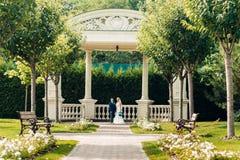 La bella giovane sposa bionda sta accanto allo sposo in un parco esotico Fotografia Stock