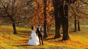 La bella giovane tenuta delle coppie dello sposo e della sposa archivi video