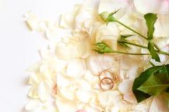 La bella immagine tonificata con le fedi nuziali si trova su bianco contro lo sfondo dei fiori immagine stock