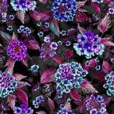 La bella lantana blu fiorisce con le foglie porpora su fondo nero Reticolo floreale senza giunte Pittura dell'acquerello Immagini Stock Libere da Diritti