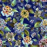 La bella lantana fiorisce con le foglie verdi su fondo blu scuro Reticolo floreale senza giunte Pittura dell'acquerello Immagini Stock