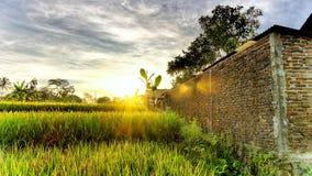 La bella luce dell'alba compare dalla nuvola epica Immagini Stock