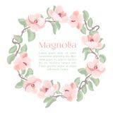La bella magnolia dettagliata fiorisce la struttura del cerchio del fiore Fotografie Stock Libere da Diritti