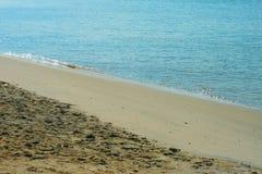 La bella ondulazione ha colpito la costa Immagine Stock Libera da Diritti