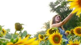 La bella ragazza è fotografata nel campo con i girasoli HD video d archivio