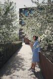 La bella ragazza castana pensierosa con i capelli di scarsità in un cappotto blu è in un giardino fiorito della molla con un cili fotografia stock