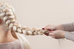 La bella ragazza con capelli biondi, parrucchiere tesse un primo piano della treccia fotografia stock