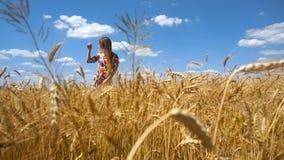 La bella ragazza felice sta stando in un giacimento di grano video d archivio