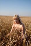 La bella ragazza nel campo con frumento Immagine Stock Libera da Diritti