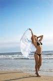 La bella ragazza sensuale si leva in piedi su una spiaggia Fotografie Stock Libere da Diritti