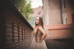 La bella ragazza sexy con forma perfetta lunga del vestito e dei capelli ha abbronzato il corpo che possing vicino alla parete Fotografie Stock
