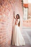 La bella ragazza sexy con forma perfetta lunga del vestito e dei capelli ha abbronzato il corpo che possing vicino alla parete Immagine Stock Libera da Diritti